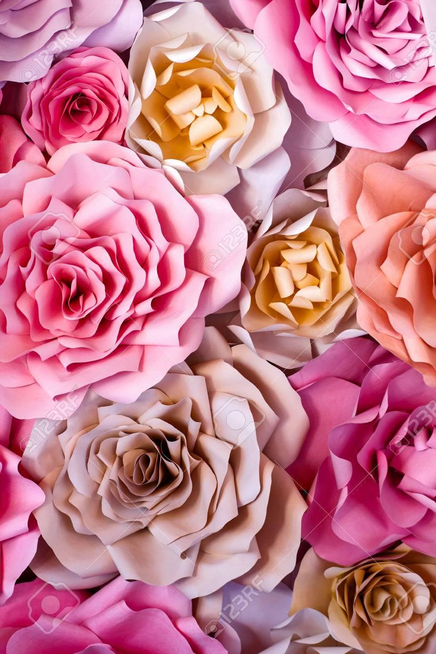 Flores De Colores De Fondo De Papel Rojo Rosa Violeta Marrón