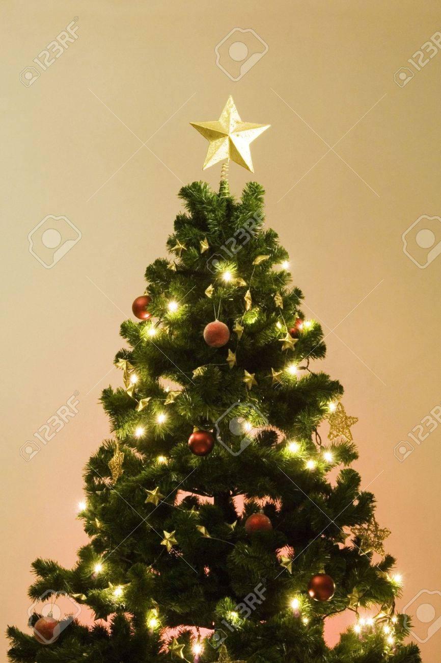 Christmas tree Stock Photo - 3193631