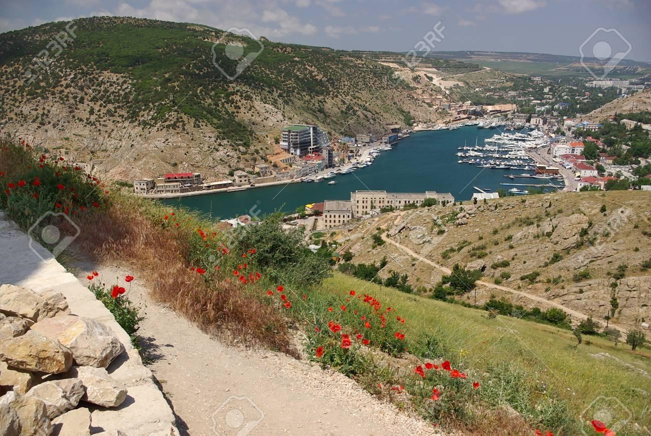 Poppies in the Bay of Balaclava Stock Photo - 7916642