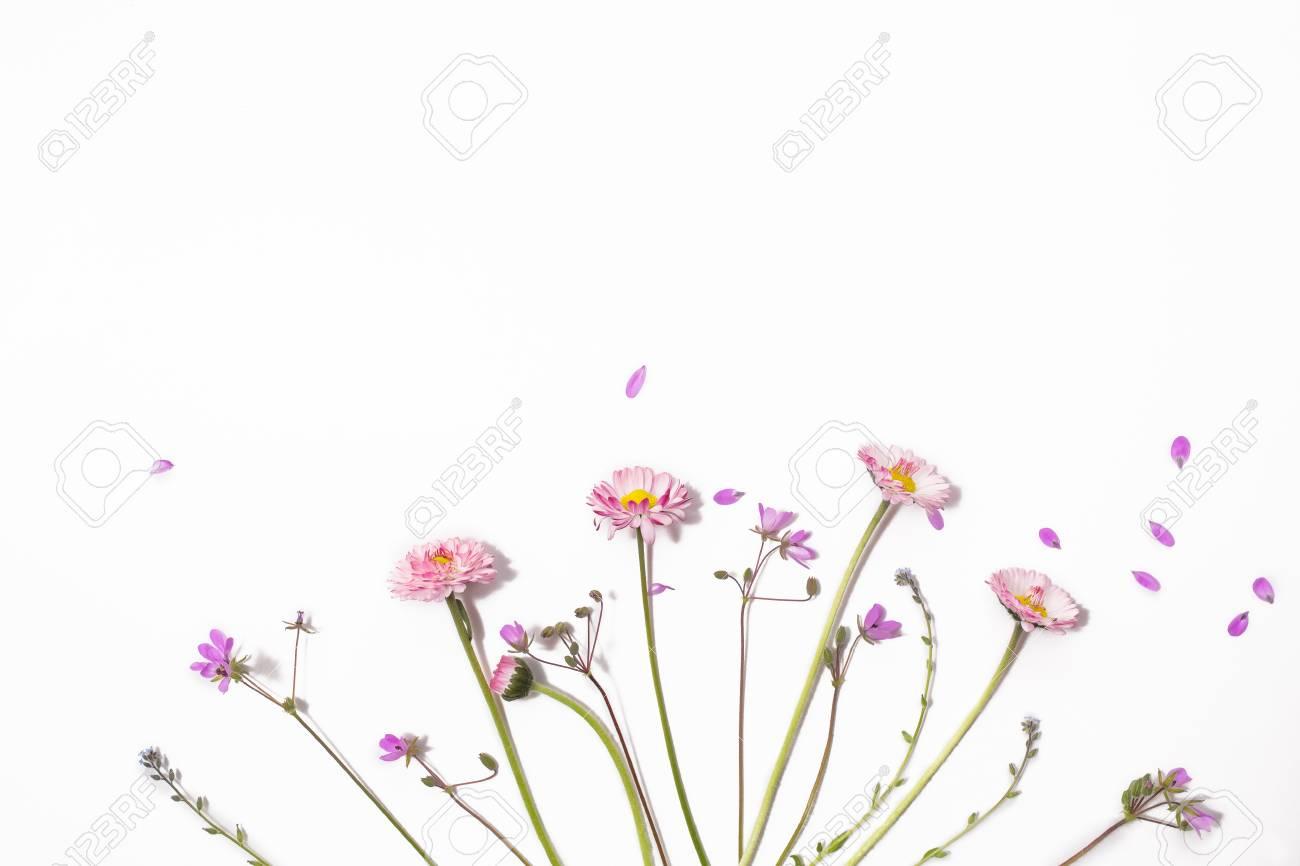 Patrón Floral Sobre Un Fondo Blanco Flores Aisladas Sobre Fondo