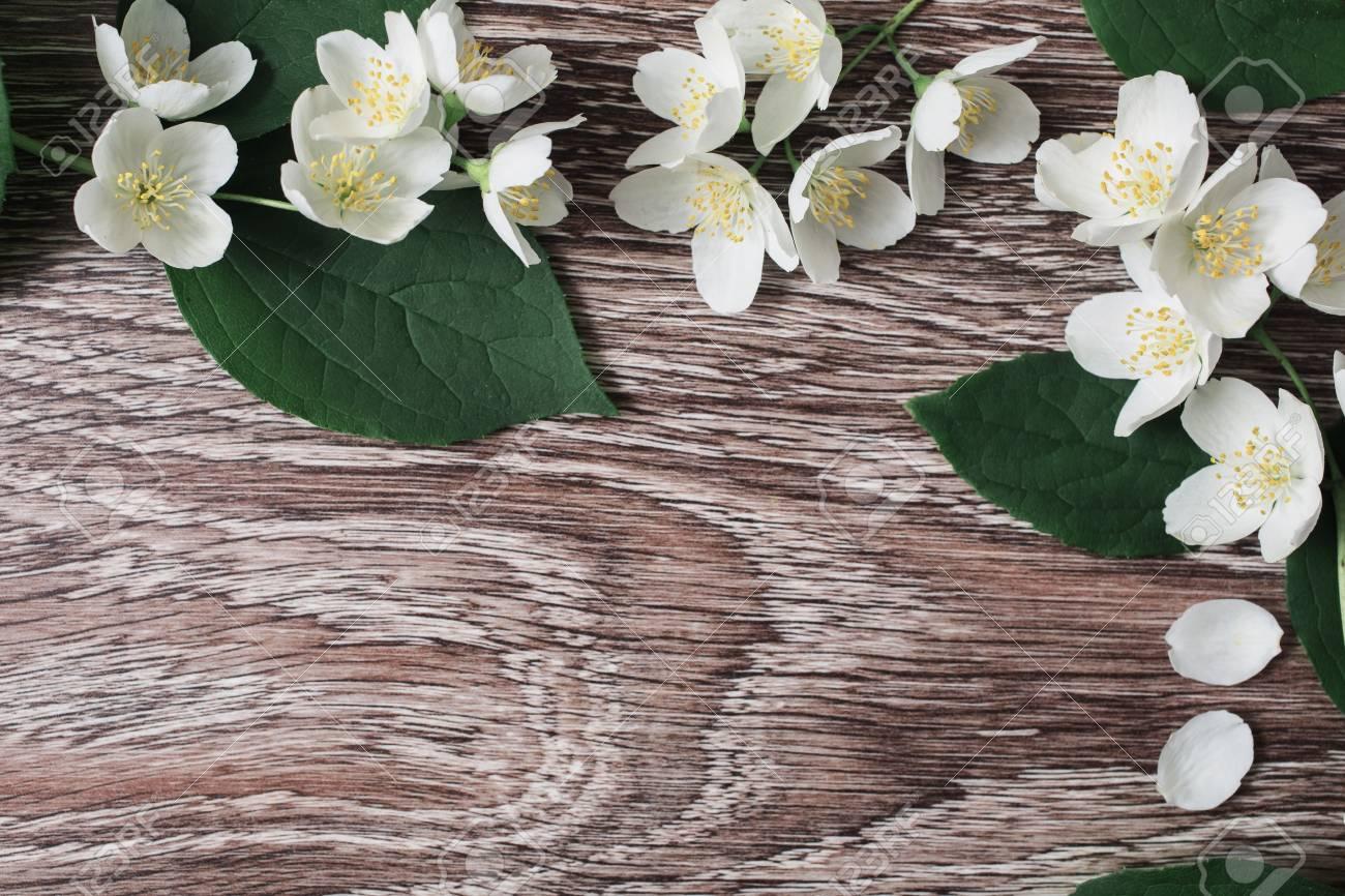 Frame of white flowers and jasmine petals lie on the wooden frame of white flowers and jasmine petals lie on the wooden background wedding invitation card izmirmasajfo