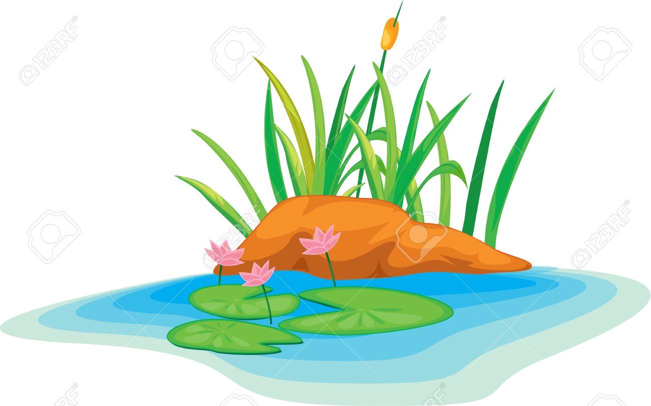 illustration lotus flowers - 13131546