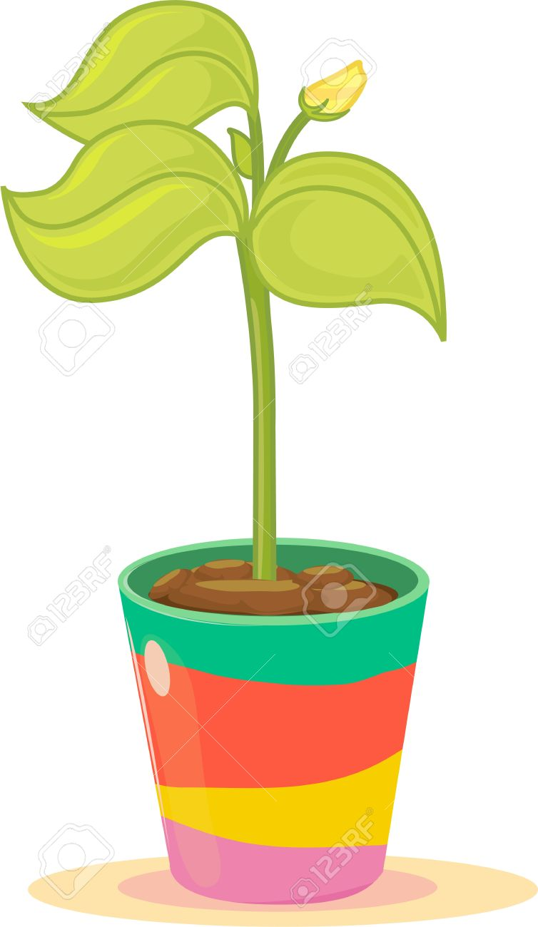 Budding yellow flower in colourful plant pot Stock Vector - 13206203