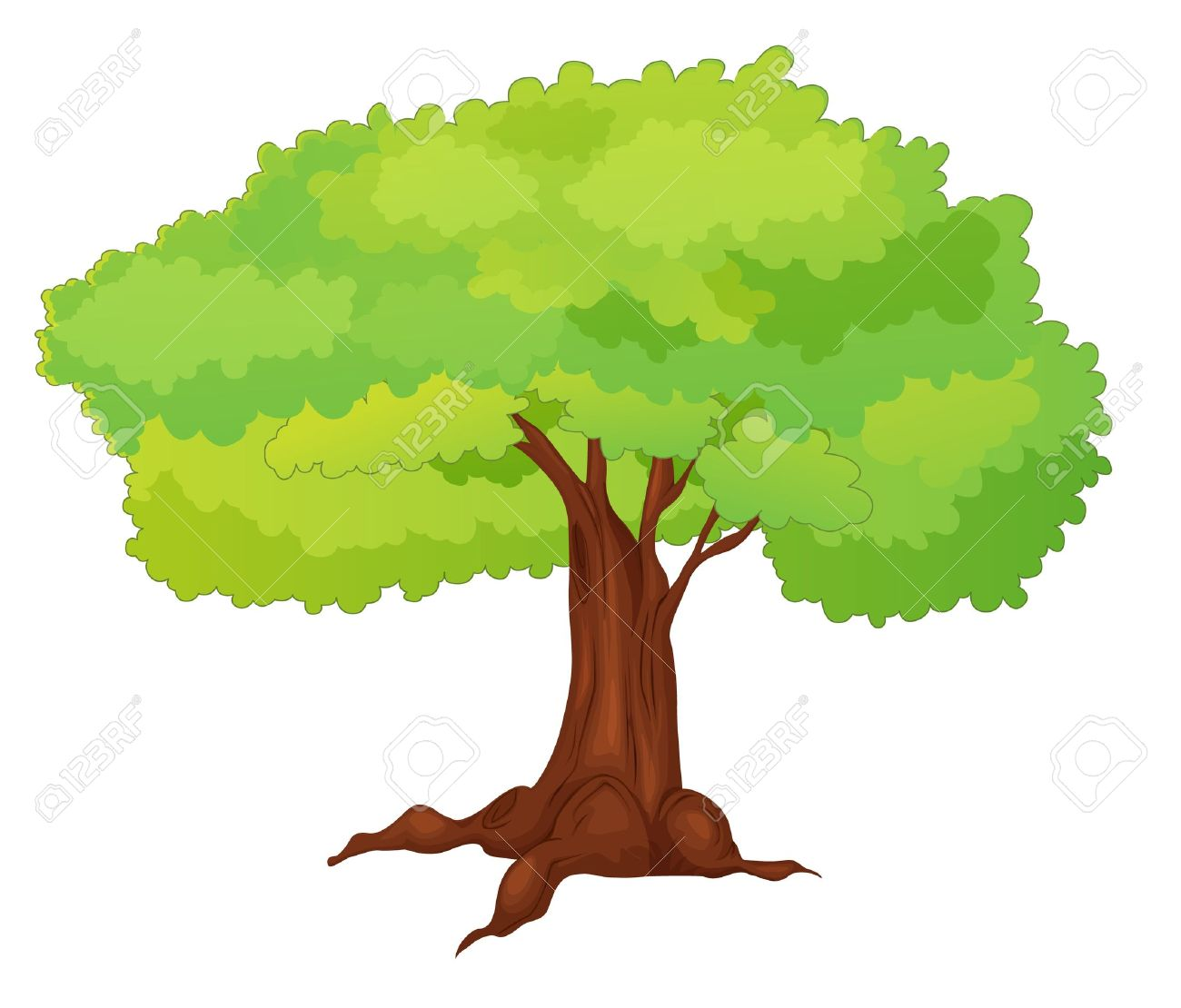 Illustration of single isolated tree - cartoon style Stock Vector - 13268586