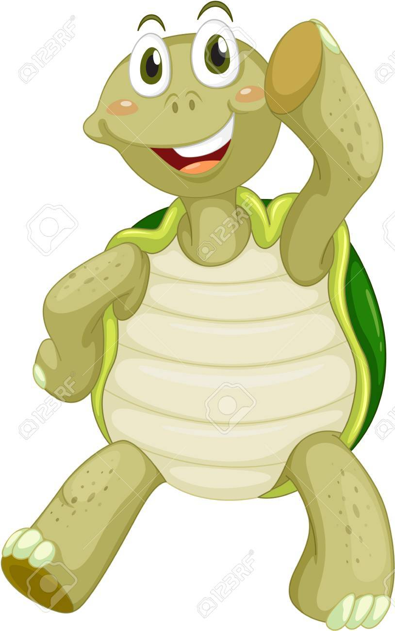 Cute turtle on a white background Stock Vector - 13376772