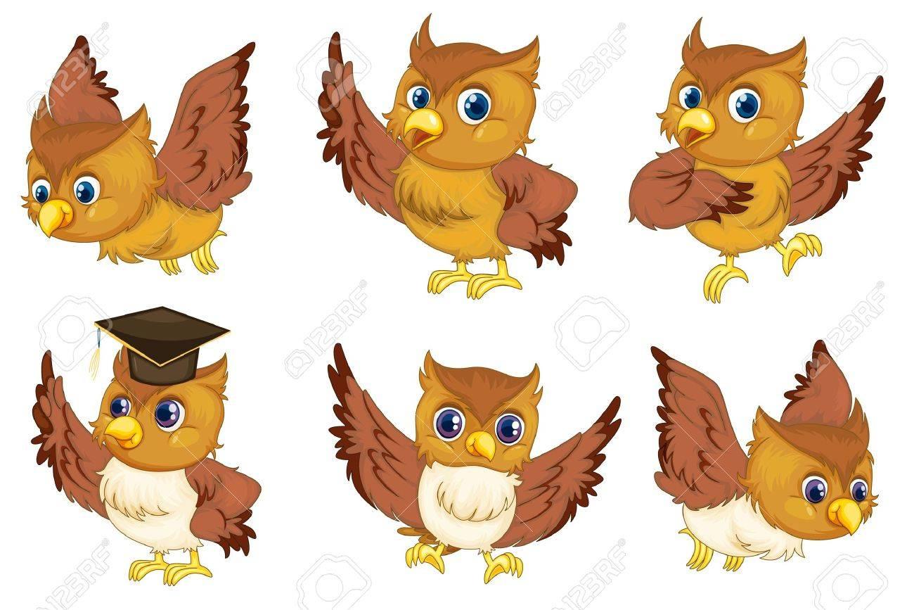 Illustraiton of comical owl on white Stock Vector - 13494201