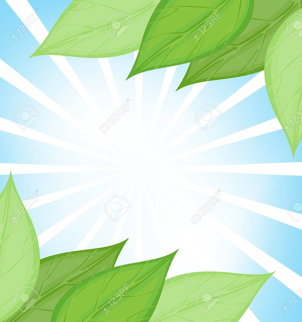 Illustration of a green leaf template Stock Vector - 13524640