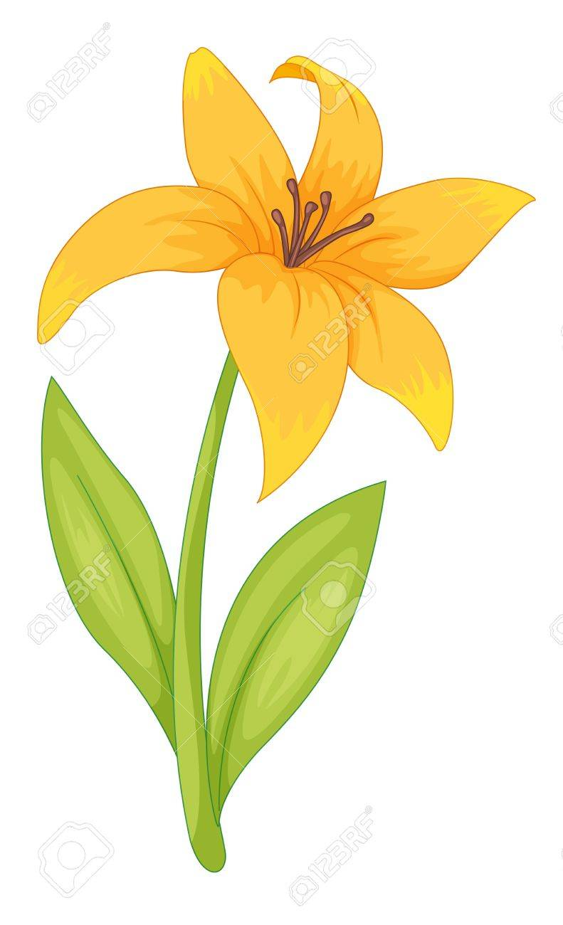 Simple Flower Part - 31: Illustration Of A Simple Flower Stock Vector - 13631952