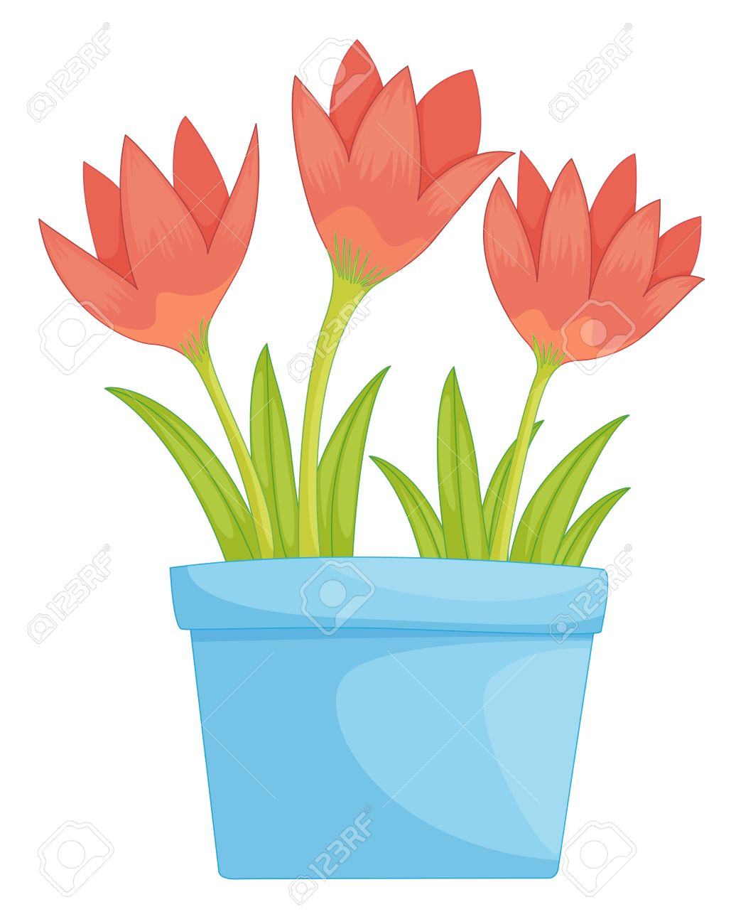 Illustration of a pot of flowers Stock Vector - 13632004