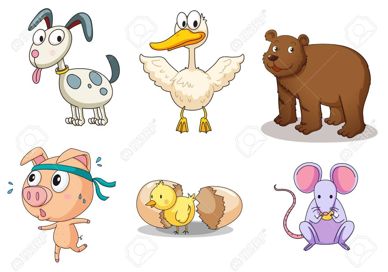 Illustration of collection of animals Stock Vector - 13749183