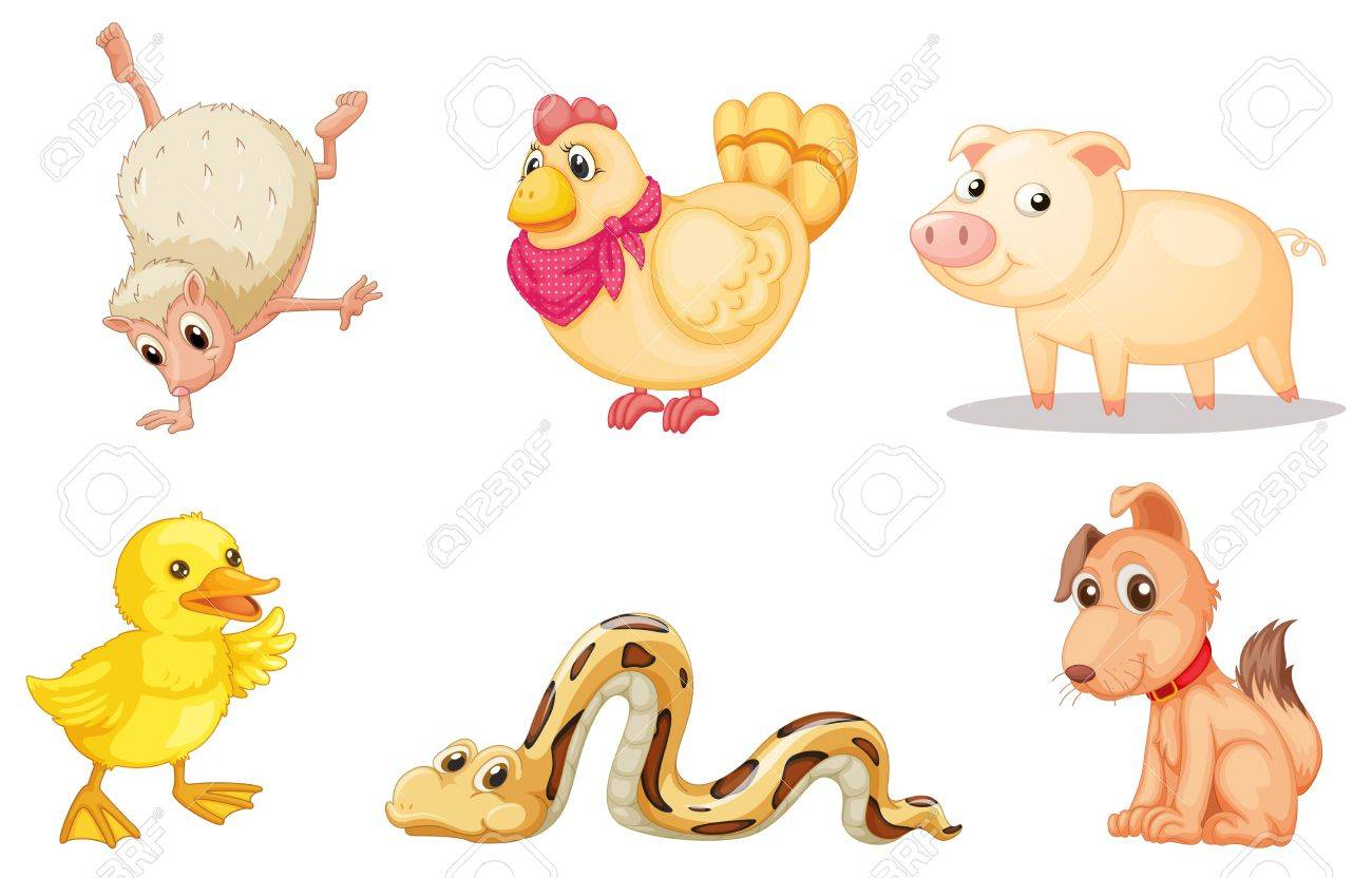 Illustrated group of comical animals Stock Vector - 13776660