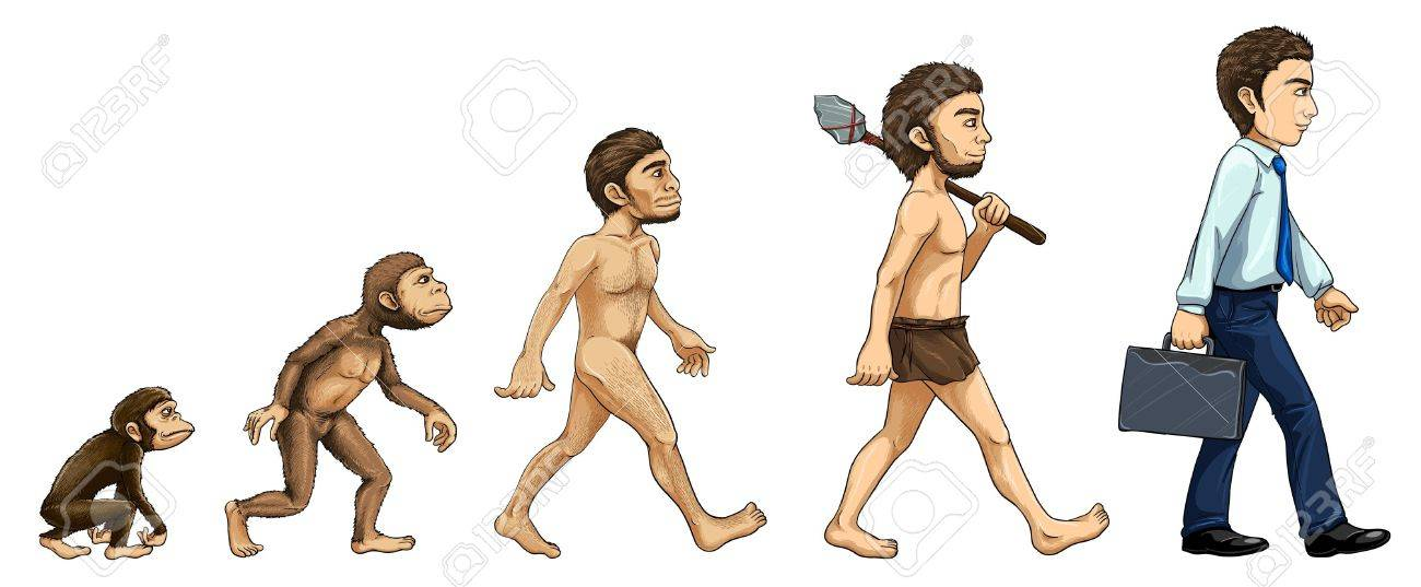 Illustration of the process of evolution Stock Vector - 13974843