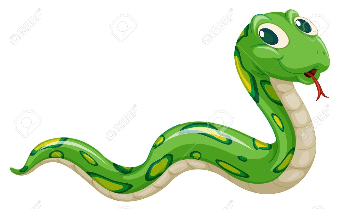 illustration of green snake on a white background - 14253744