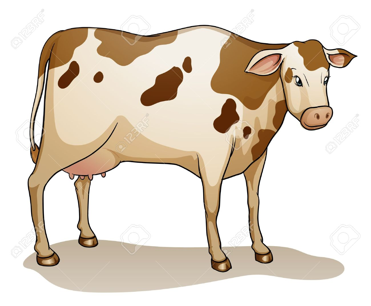 illustration of a cow on a white background Stock Vector - 14528643
