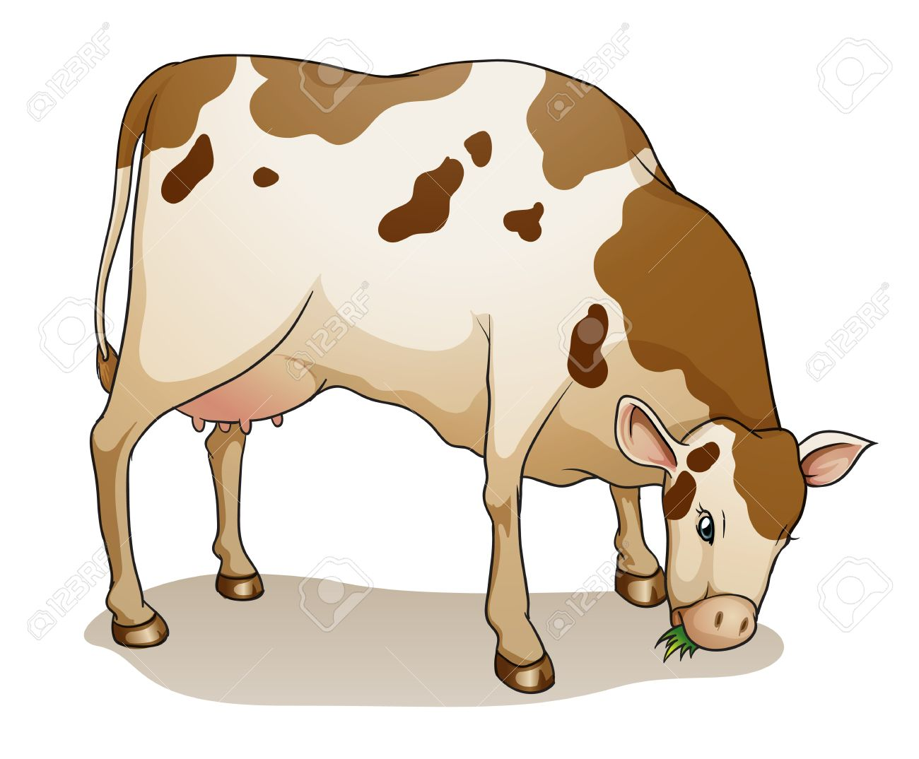 illustration of a cow on a white background Stock Vector - 14487106