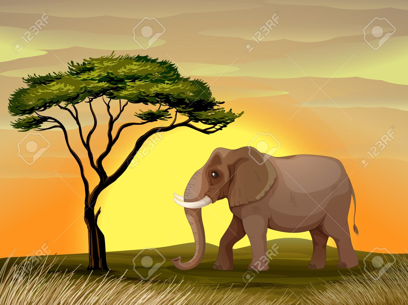illustration of a Elephant standing under a tree Stock Vector - 14871561