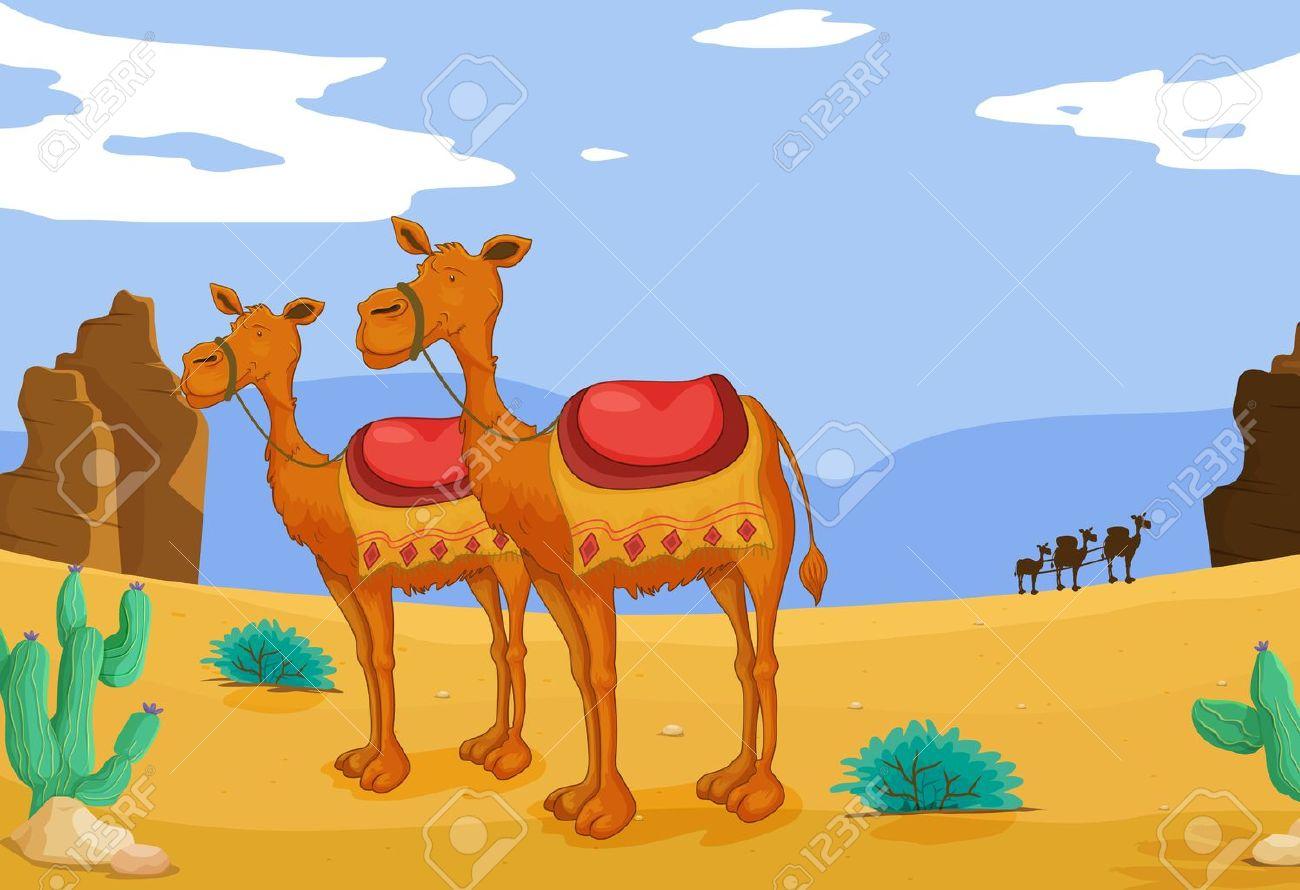 Desert Animals Camel Group of Camels in Desert