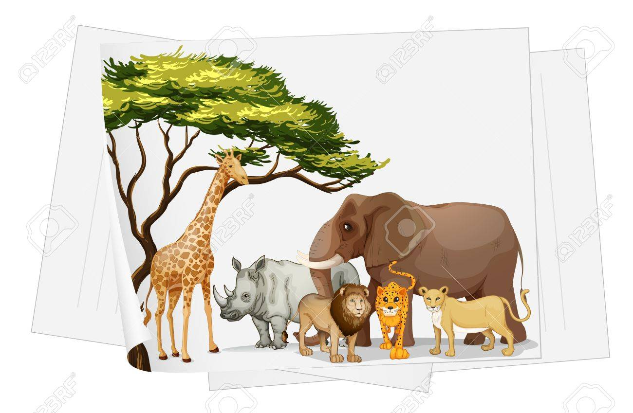 illustration of Animals in jungle on a paper on a white Stock Vector - 15250157