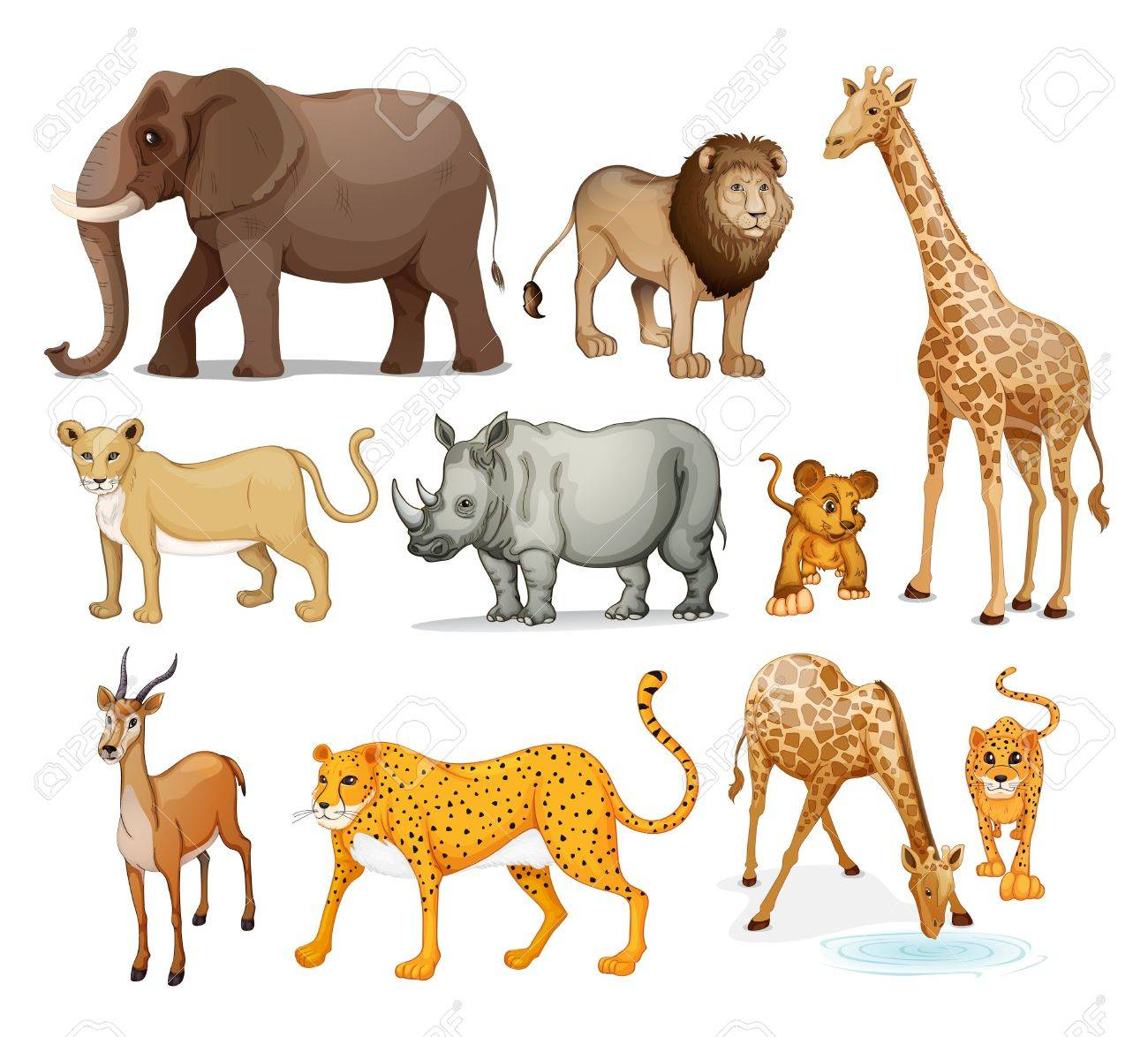 illustration of Animals in on a white background Stock Vector - 15592091