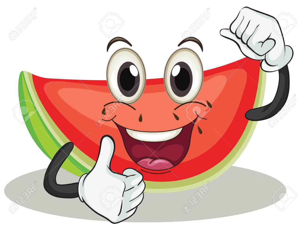 illustration of a watermelon on a white background Stock Vector - 15607203