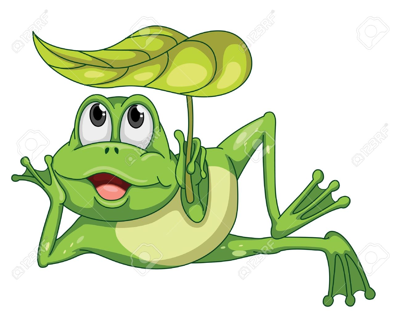 detailed illustration of a green frog and a leaf Stock Vector - 15869510
