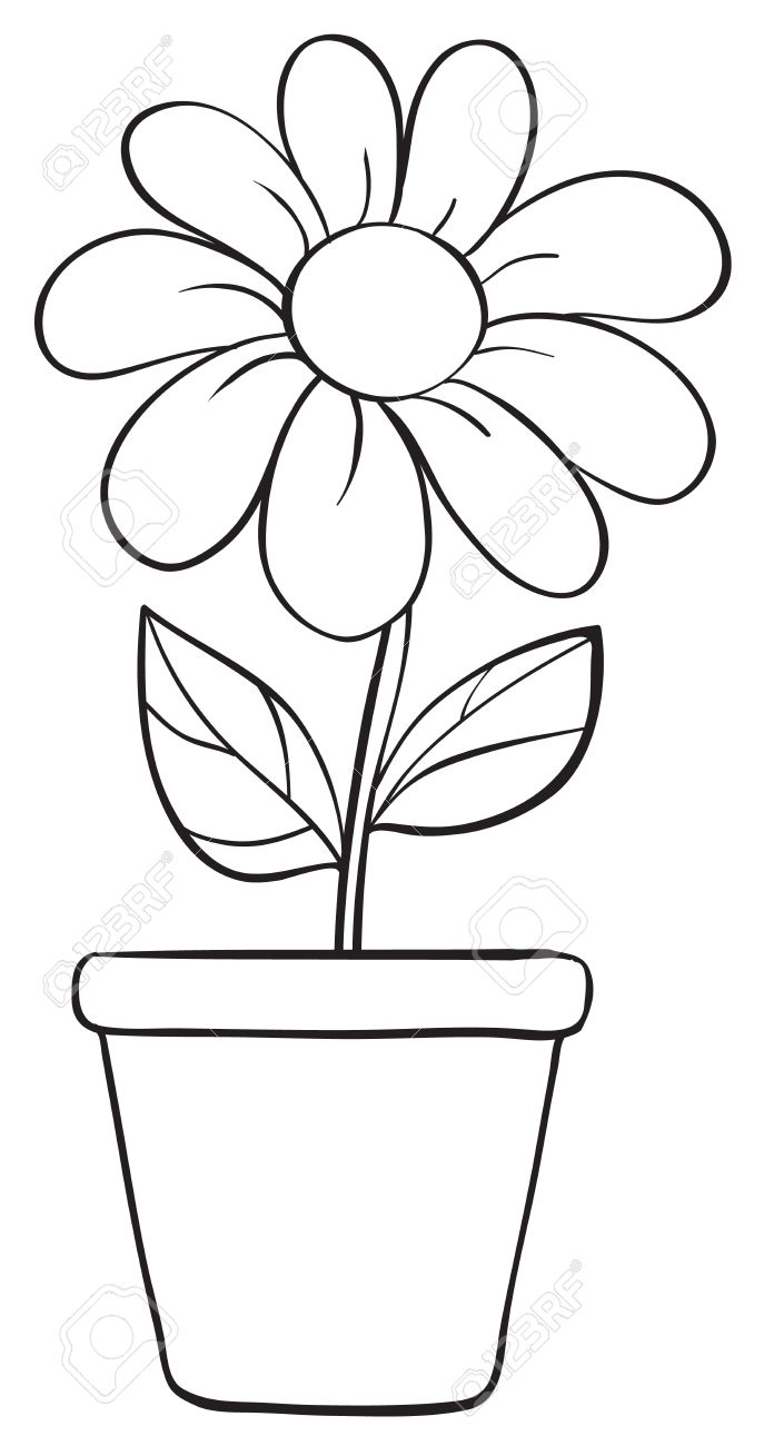 Illustration of a flower and a pot sketch on a white background stock vector 15869920