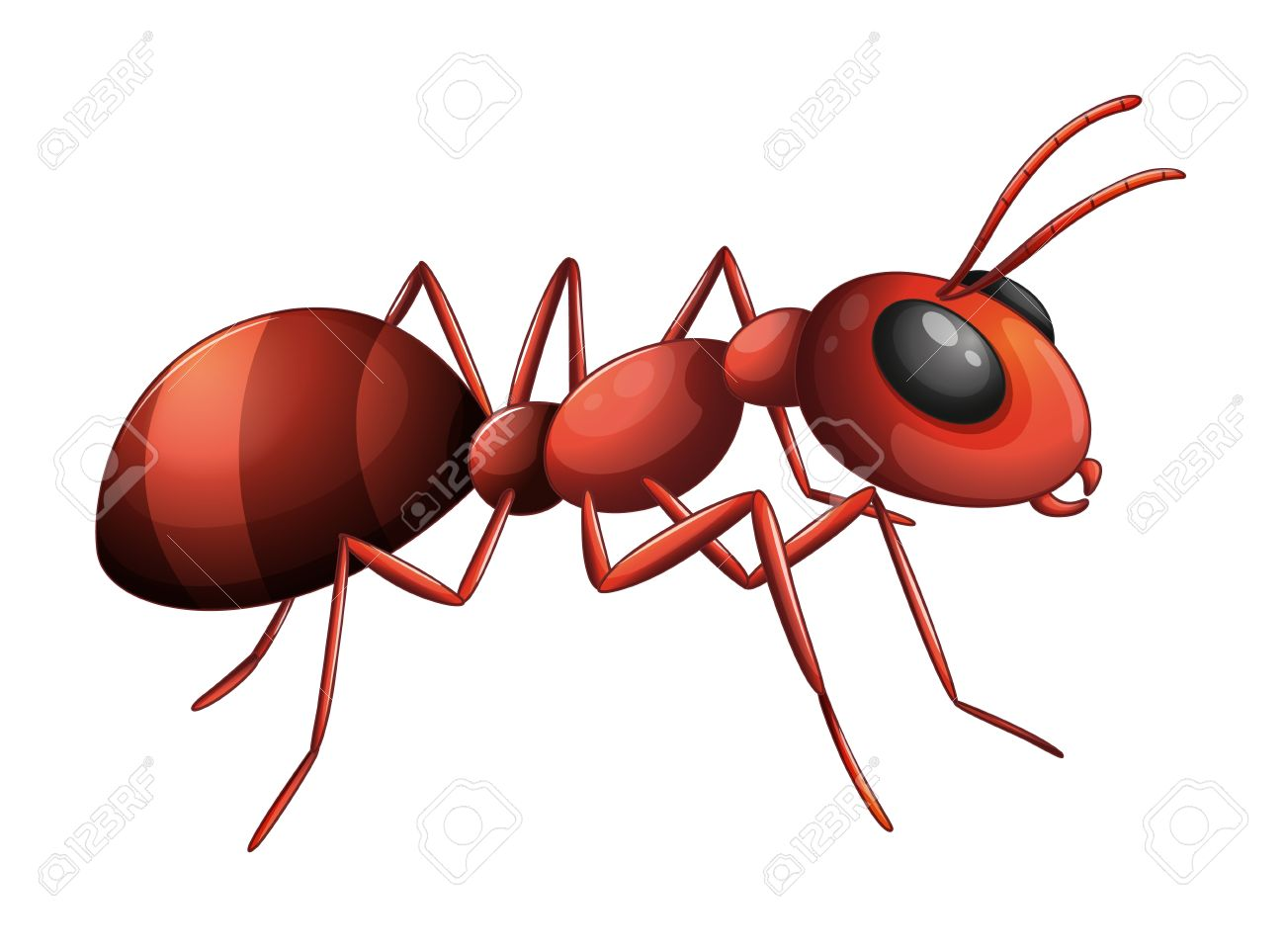 9 907 ants stock illustrations cliparts and royalty free ants vectors rh 123rf com ants clipart free clipart ants marching