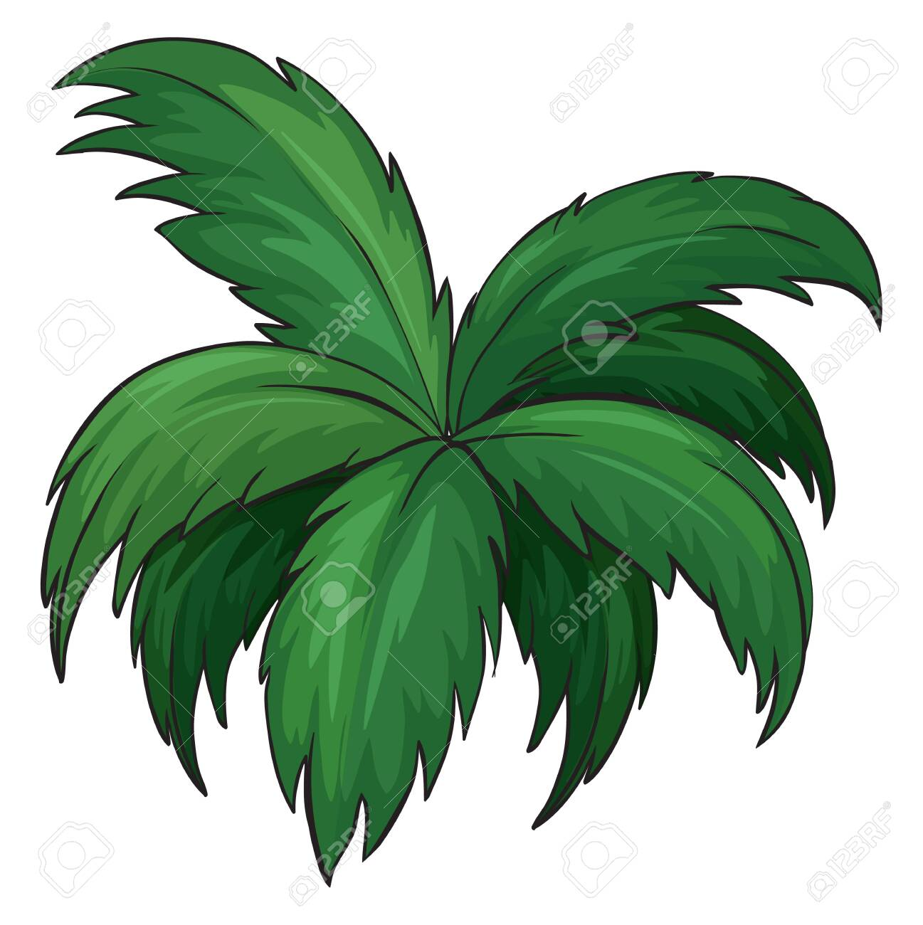 Illustration of a plant on a white background Stock Vector - 17046698