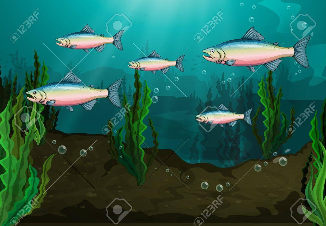 Illustration of a school of fish underwater Stock Vector - 17339159