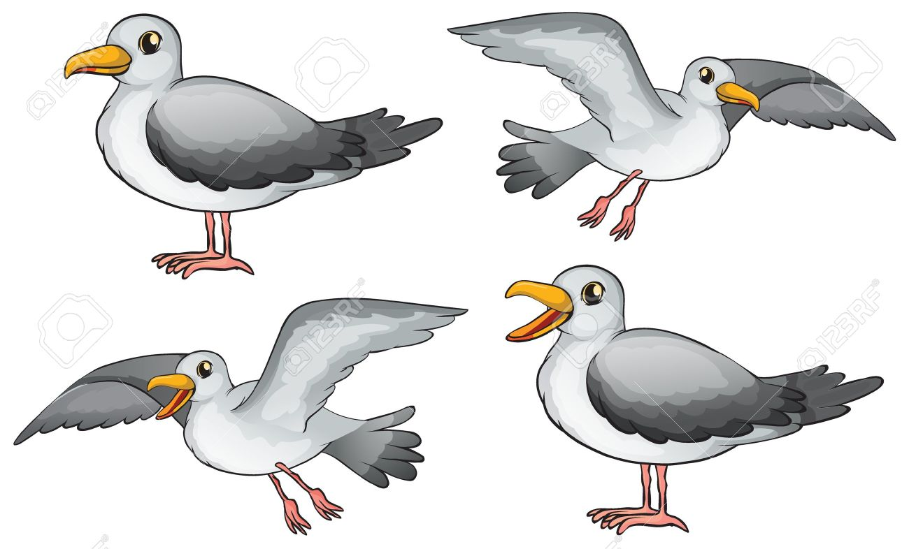 Illustration of four birds on a white background Stock Vector - 17338943