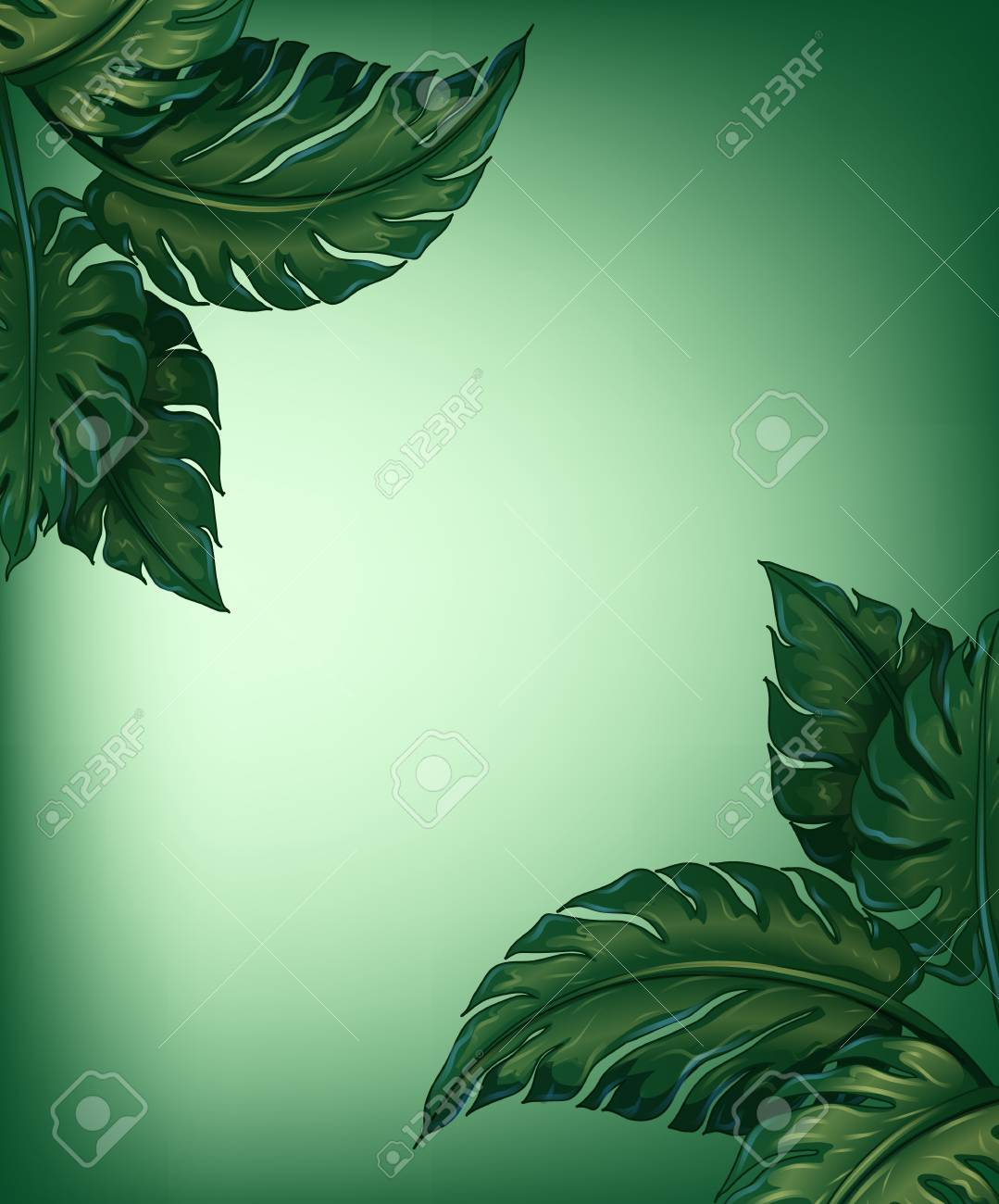 Illustration of greenery leaves for decoration Stock Vector - 17358272