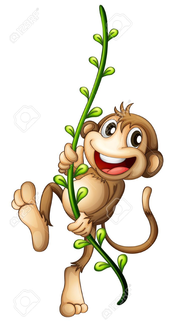 Illustration of a monkey hanging on a vine on a white background Stock Vector - 17521645