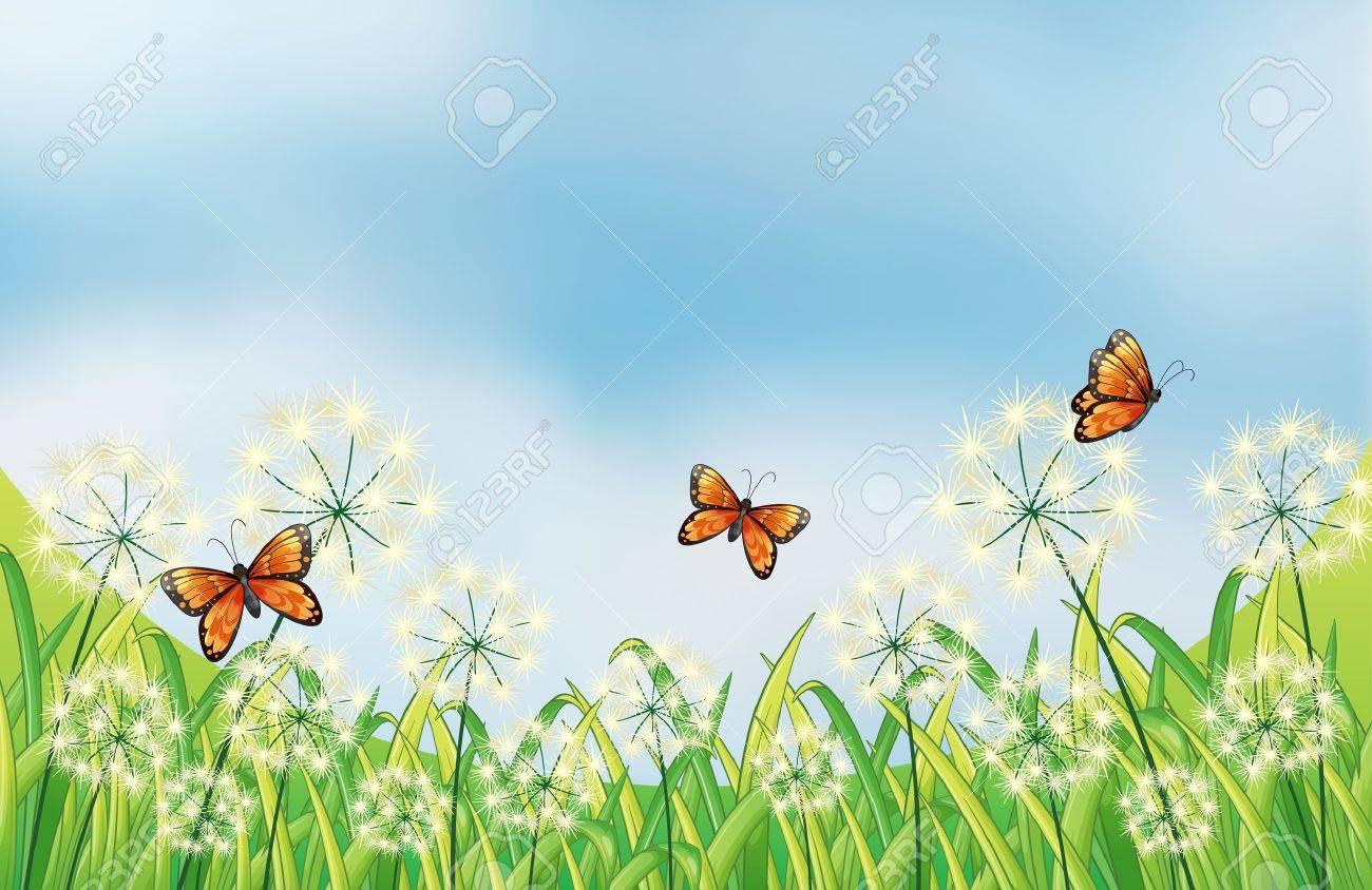 Illustration of the orange butterflies in the garden Stock Vector - 17892436