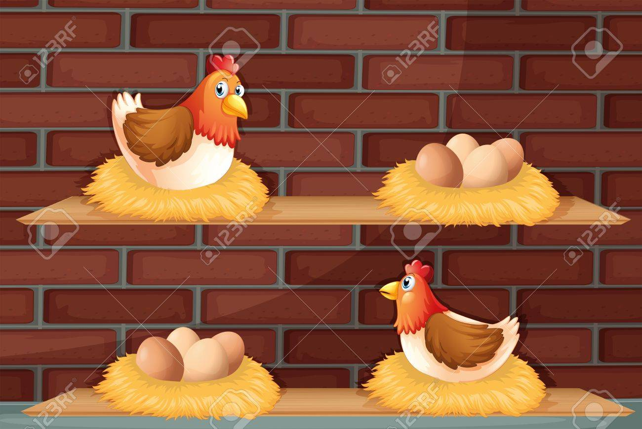 Illustration of two hens laying eggs at the wooden shelves Stock Vector - 17918359