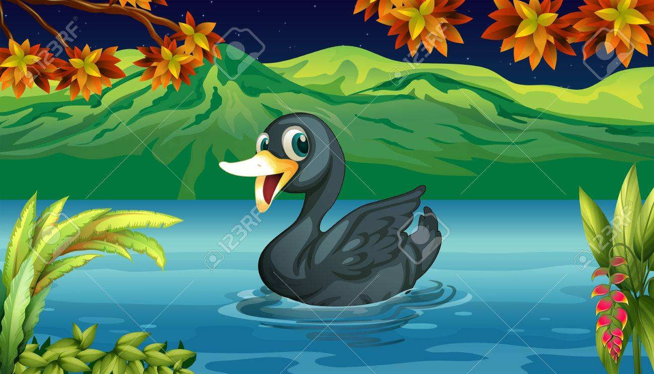 Illustration of a black swan at the lake Stock Vector - 18158387