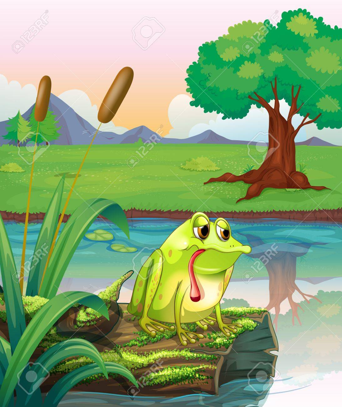 Illustration of a lonely frog above the wood with algae Stock Vector - 18610867