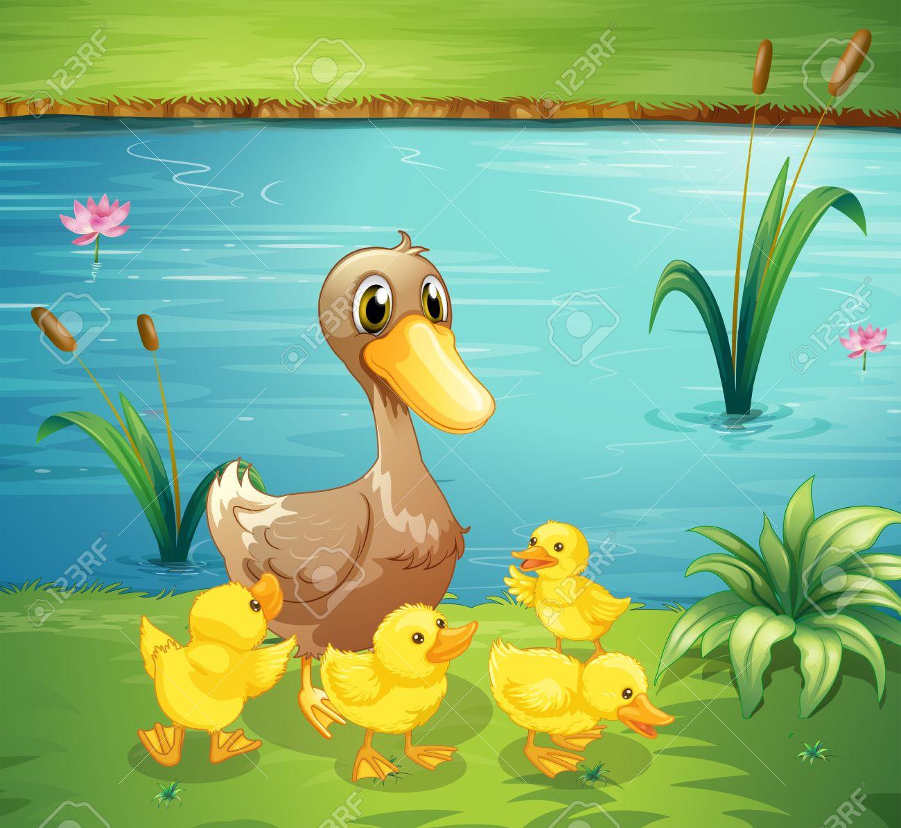 ilustración de una mamá pata con sus patitos en el río ilustraciones