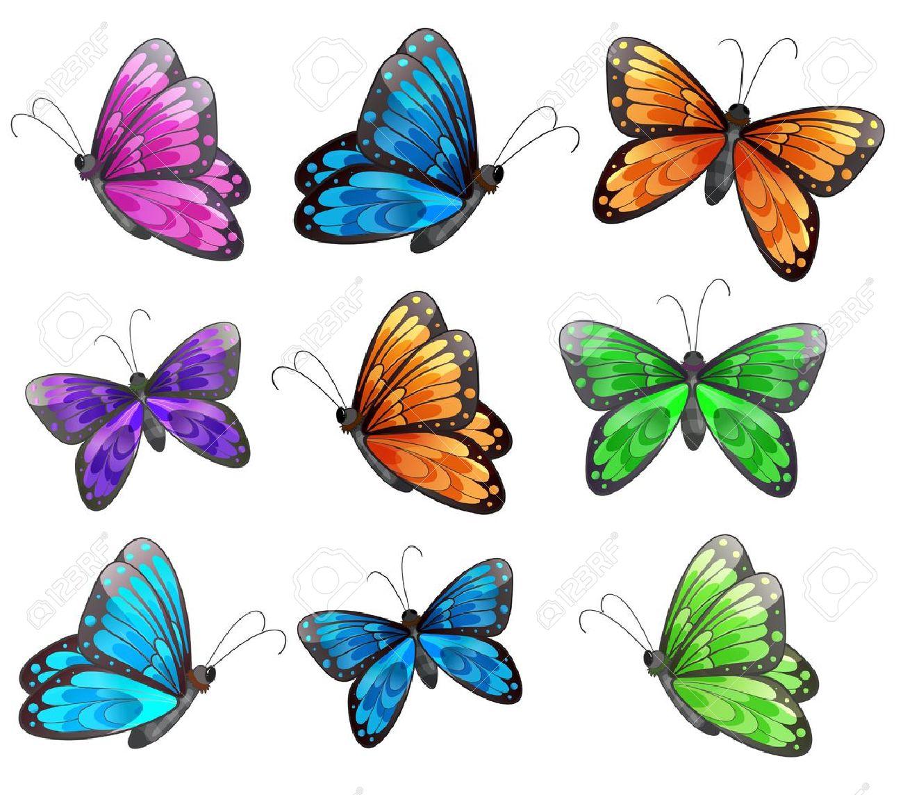 dessin papillon illustration des neuf papillons colors sur un fond blanc
