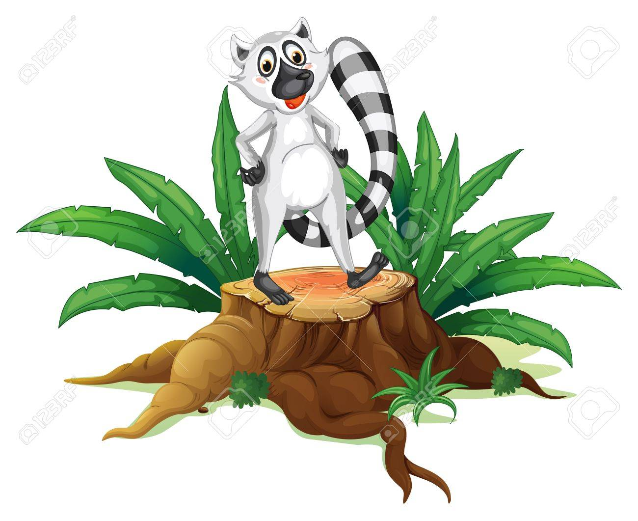 Illustration of a trunk with a lemur on a white background Stock Vector - 19302030