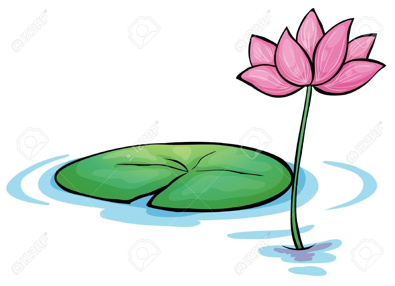 illustration of a waterlily flower on a white background royalty rh 123rf com water lily clipart free water lily clip art free