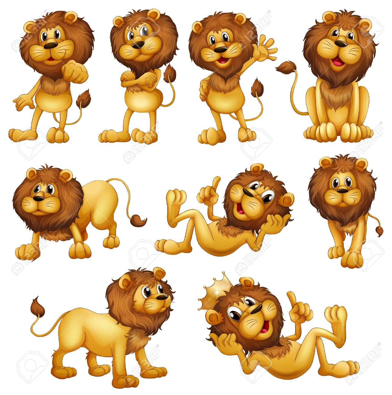 Illustrations of the lions in different positions on a white background Stock Vector - 19390015
