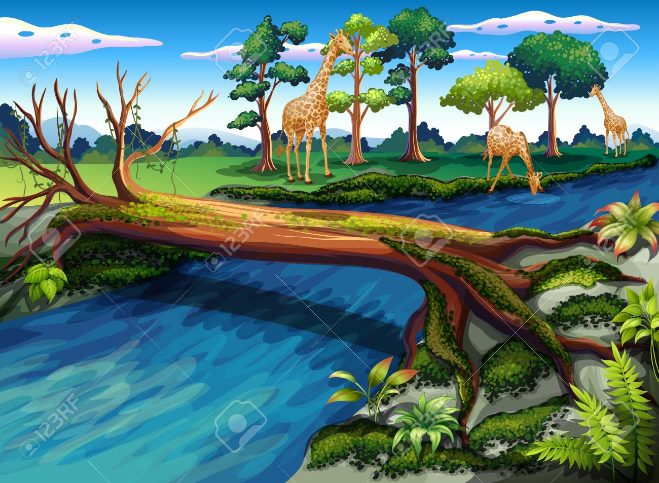 Illustration of a flowing river at the forest Stock Vector - 19390200