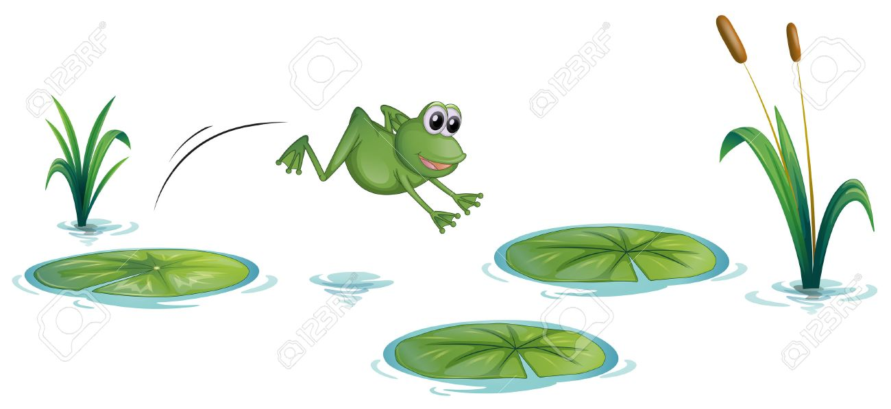 Illustration of a frog at the pond with waterlilies on a white background - 22836572