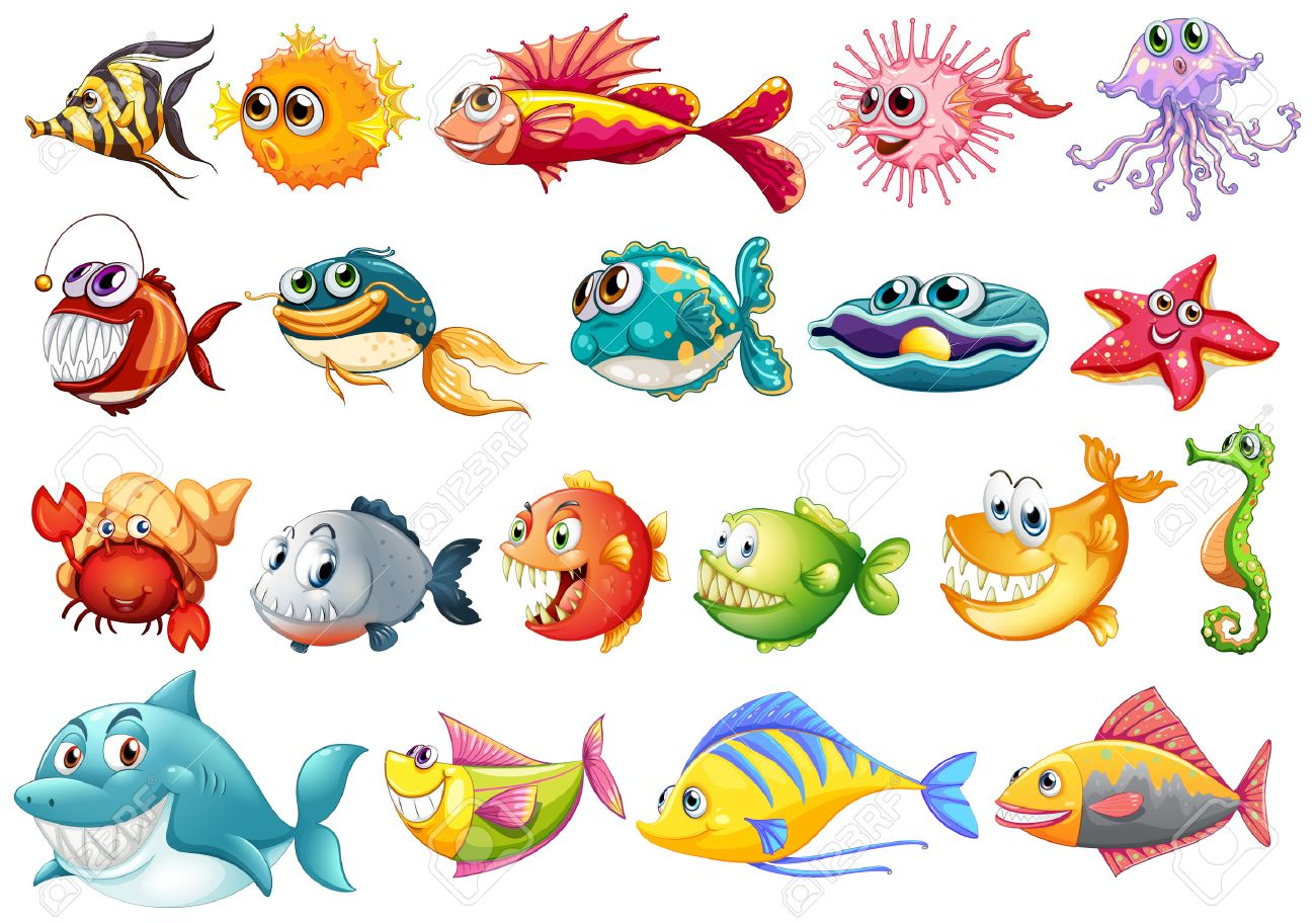 illustration of different kinds of fish royalty free cliparts