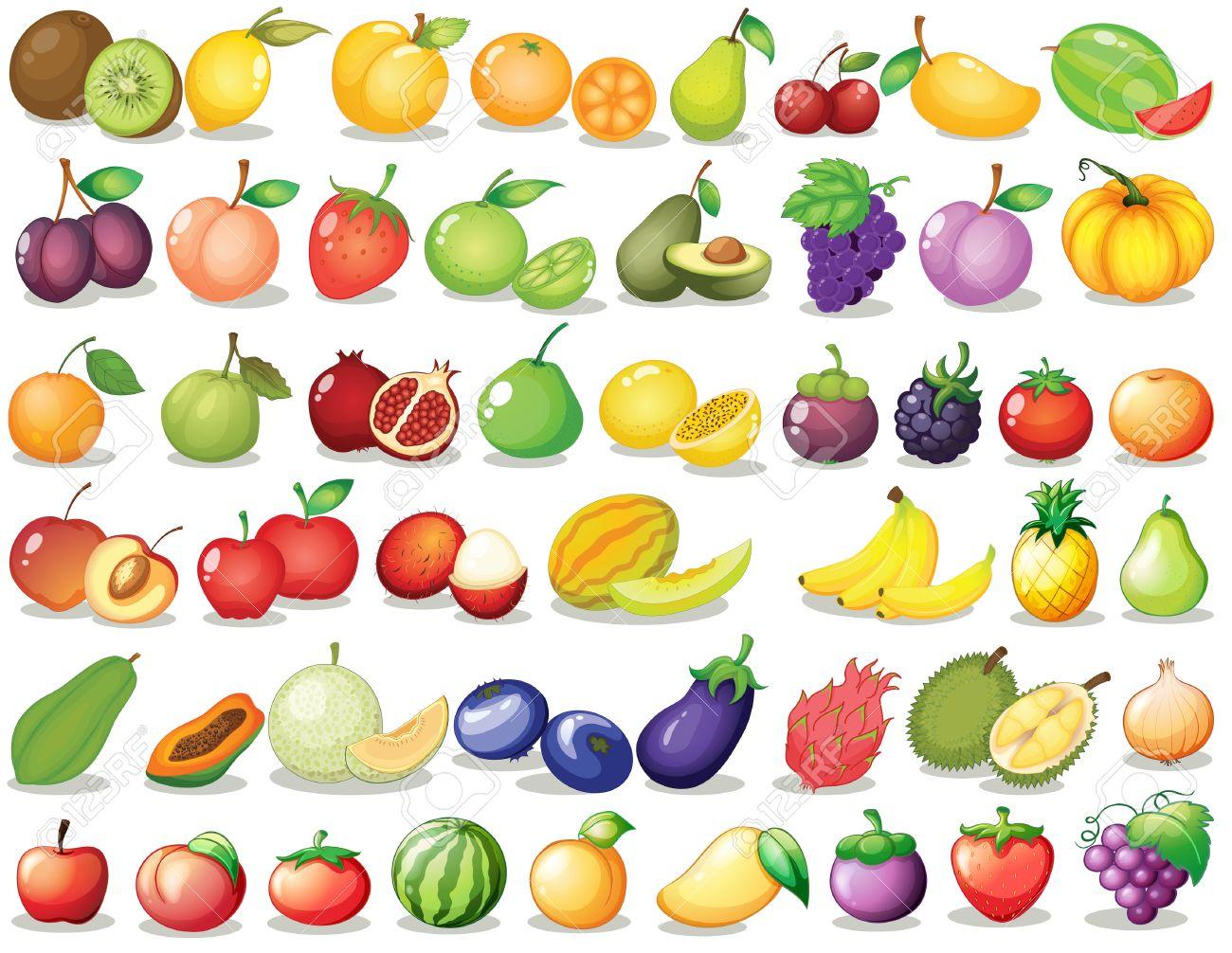 Illustration of a set of fruit - 31923334