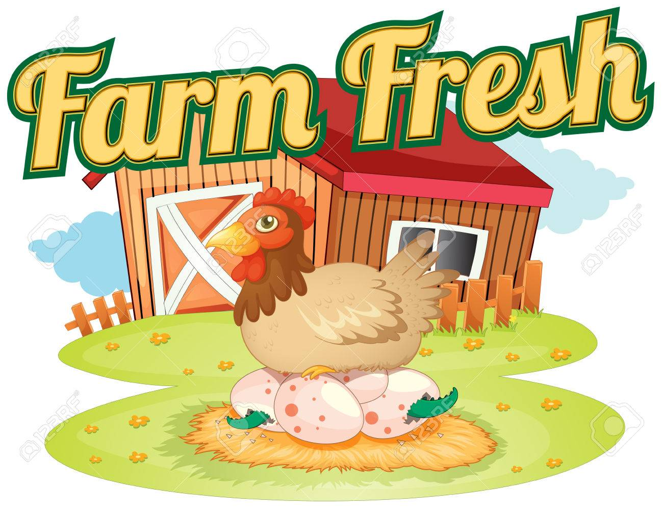 A Farm Fresh Template Showing A Hen Laying Eggs On A White ...