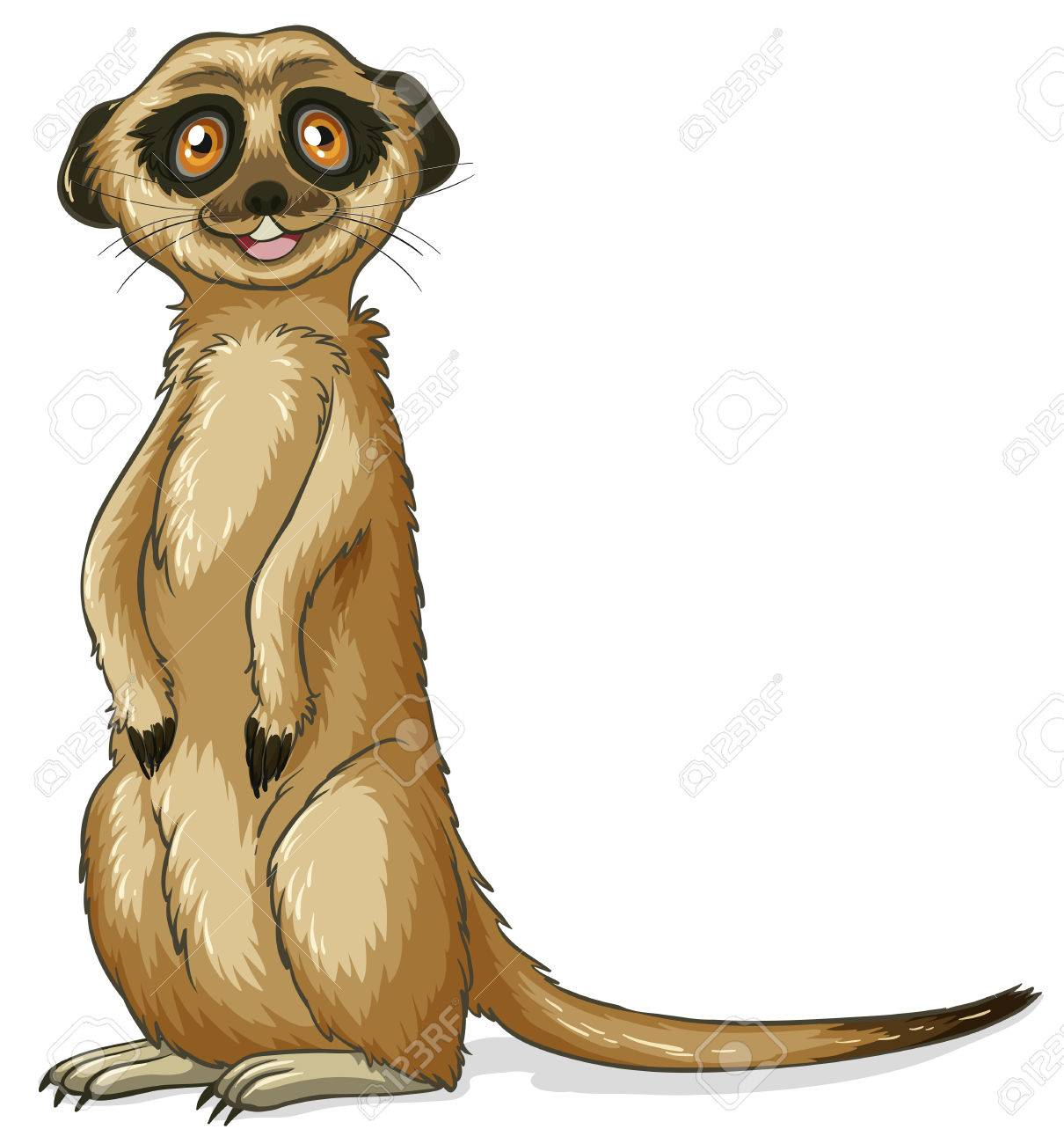 illustration of a close up meerkat royalty free cliparts vectors rh 123rf com Zebra Clip Art meerkat clipart png
