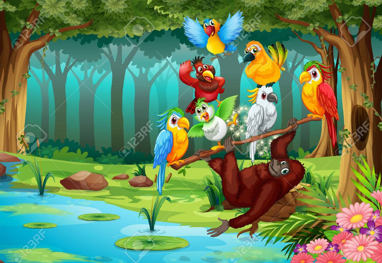 Wild animals in the forest illustration - 50692465