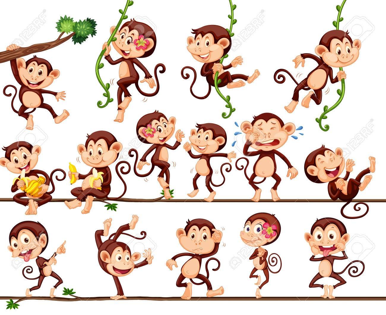 Monkeys doing different actions illustration - 51244462