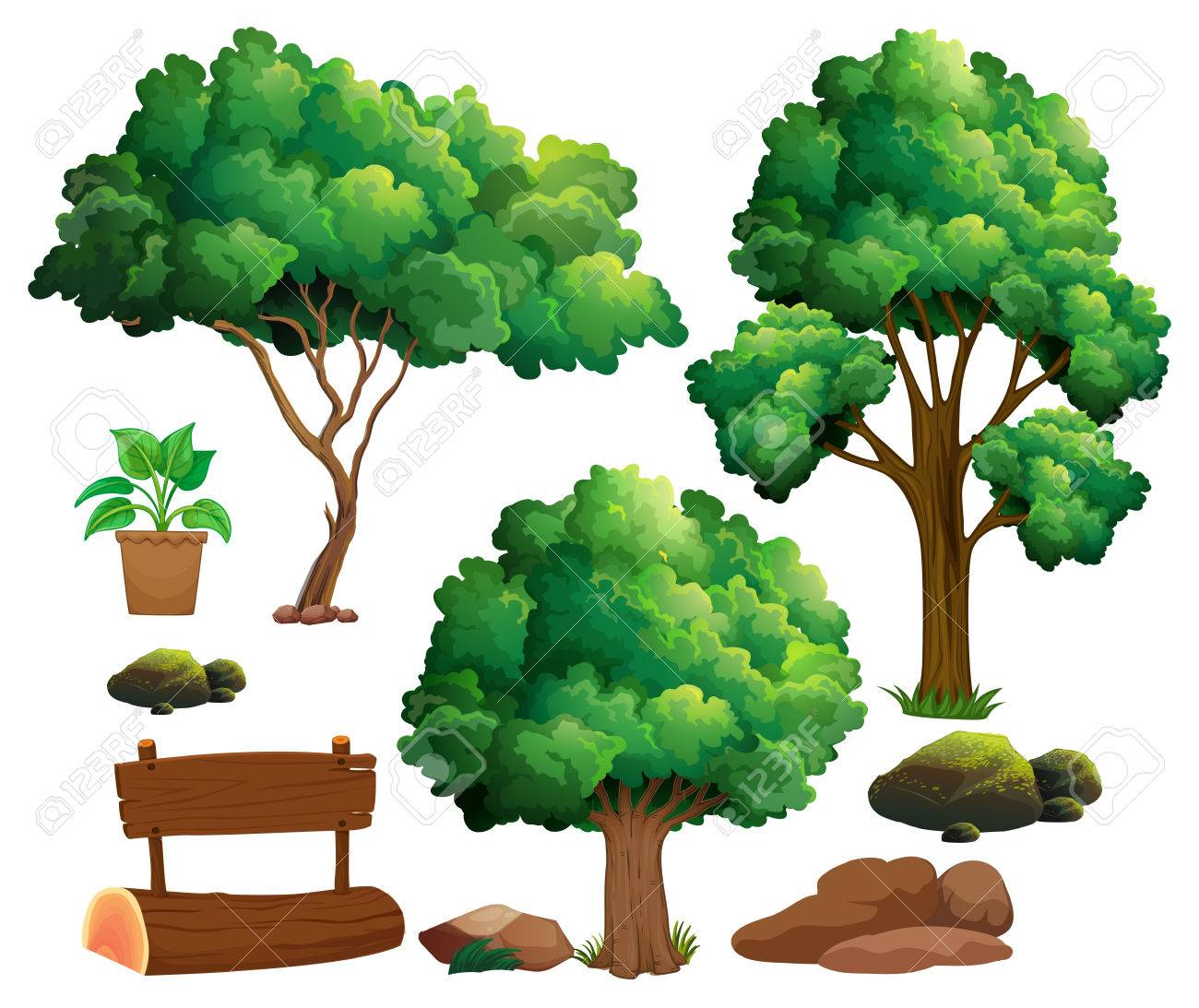 Different Types Of Trees And Garden Elements Illustration Royalty